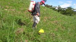 balance-gei-herbicidas