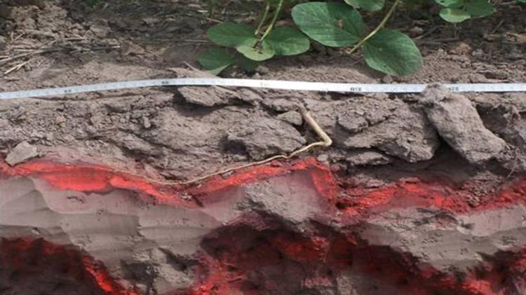 compactacion-suelo-cortesia-inta-arg