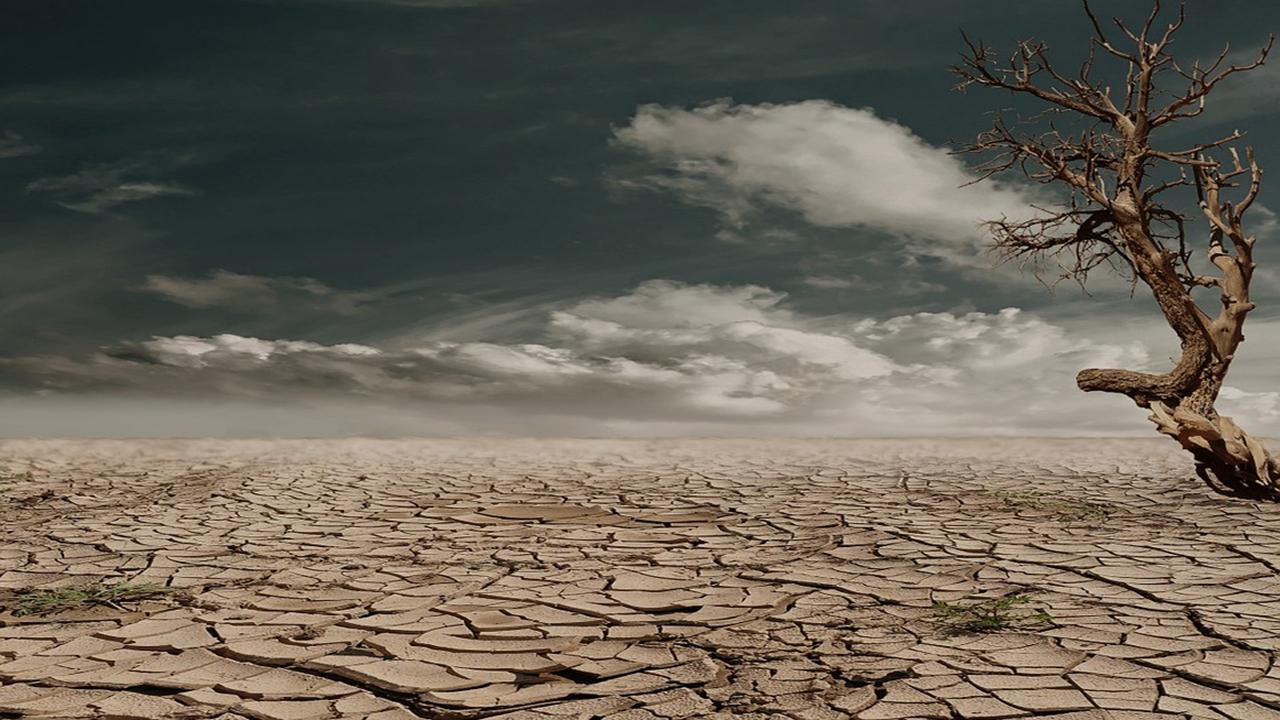 suelo-degradado-encabezado