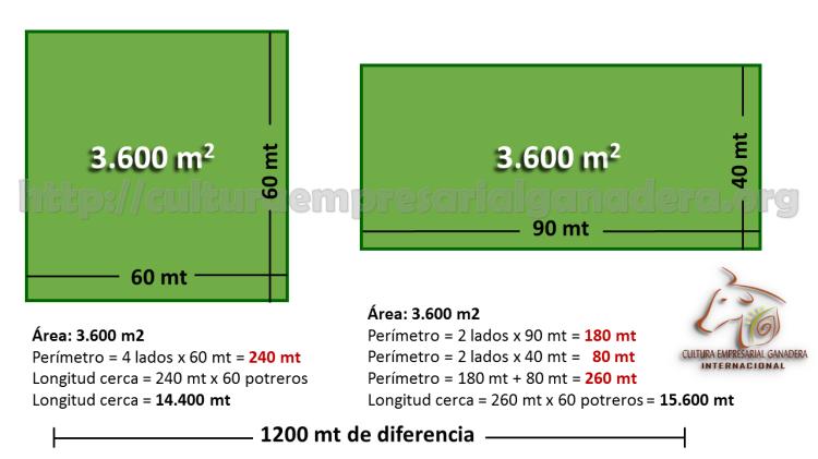 potreros-cuadrados-grafica-economia