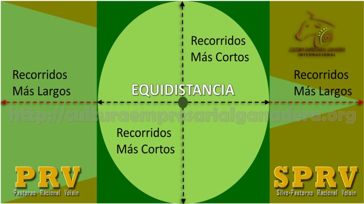 potreros-cuadrados-grafica-equidistancia