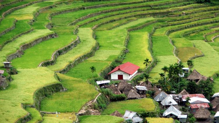 potreros-cuadrados-terrazas-filipinas