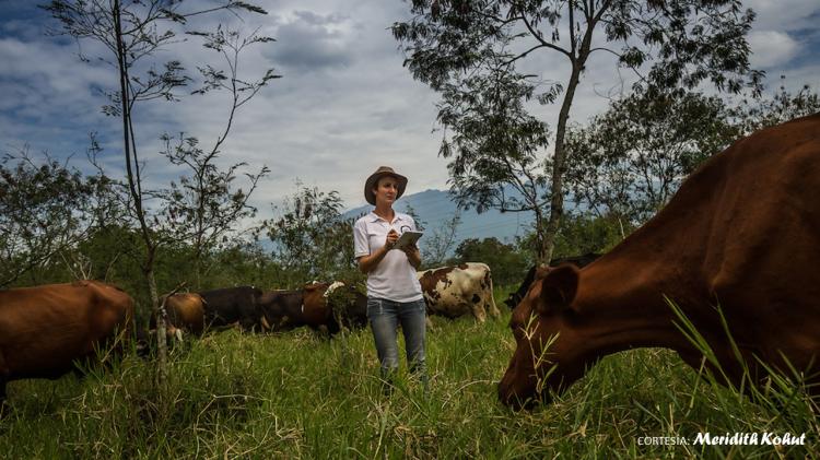 sostenible-o-sustentable-world-animal-protection-en-colombia