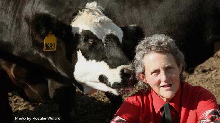 Temple Grandin (Encabezado)