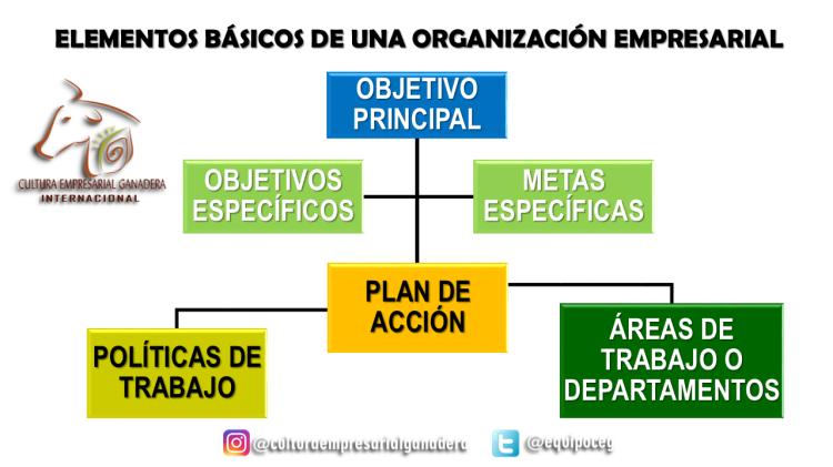 Estructura Organizacional Ago10 JLGC (Gráfica O.E.)