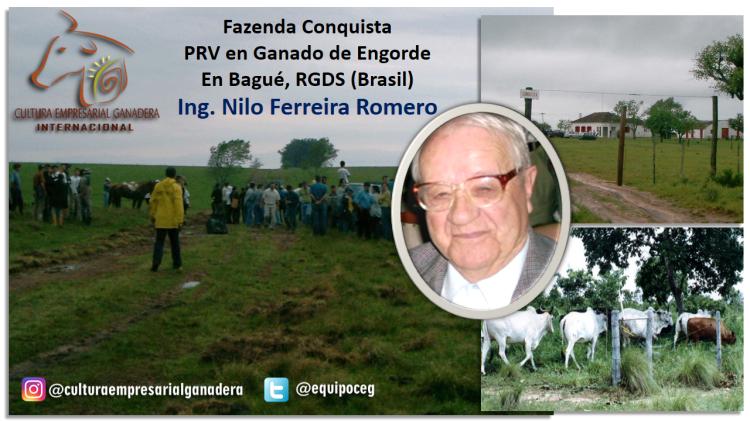 Origen SPRV (Ferreira PRV Conquista)