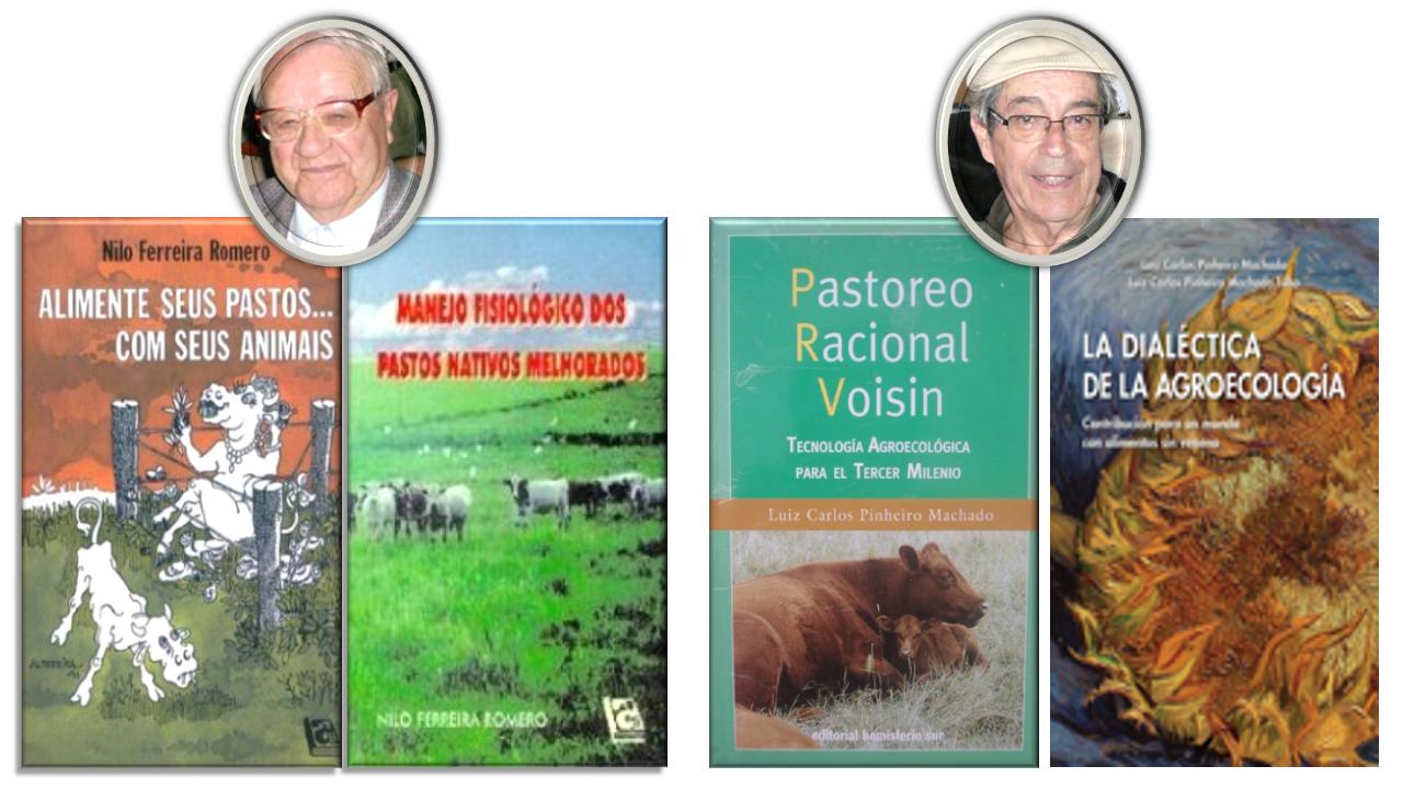 Origen SPRV (Libros Ferreira y Pinheiro)