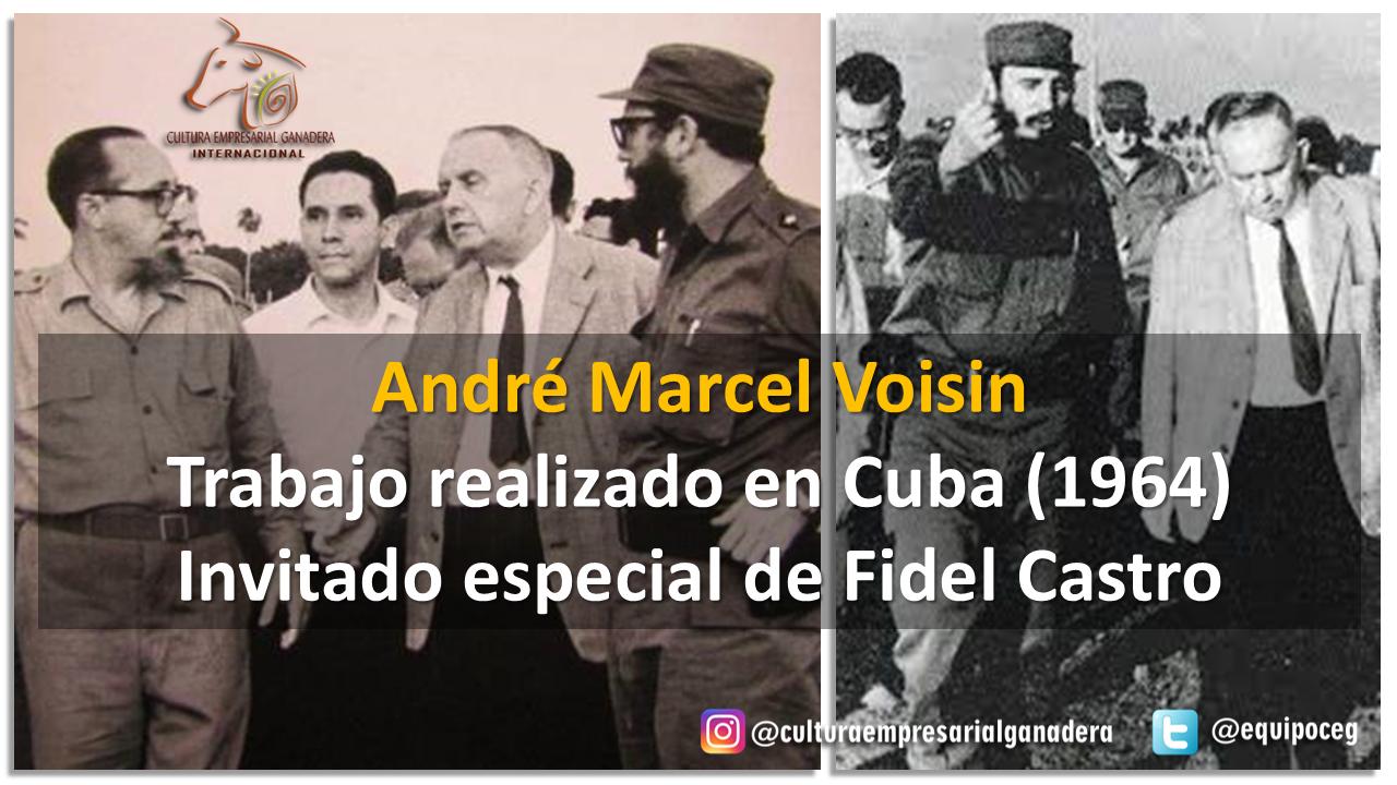 Origen SPRV (Voisin en Cuba)