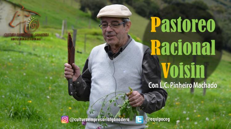 Pinheiro - Curso Colombia 2017 (Encabezado)