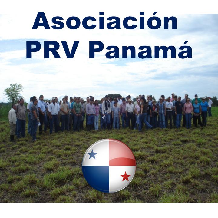 Asoc. PRV Panamá 2017 (cuadrado)