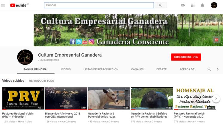 Encabezado - Canal CEG en YouTube 2018.png