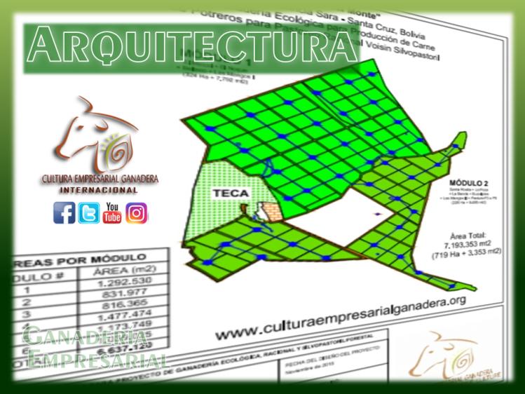 Portafolio CEG (Arquitectura)