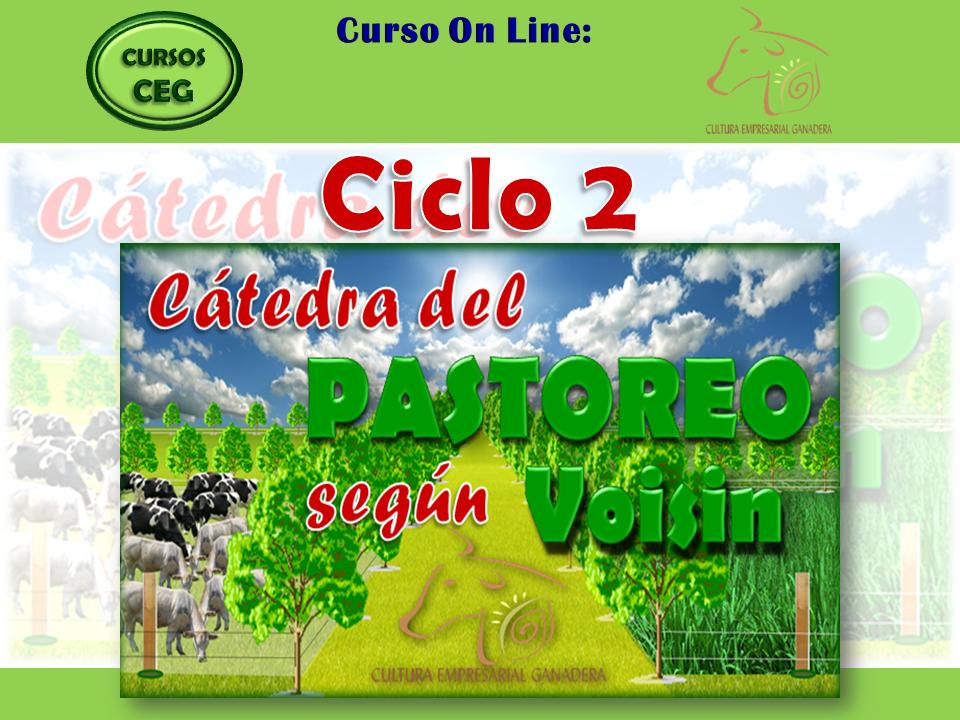 Ciclo 2 (portada)